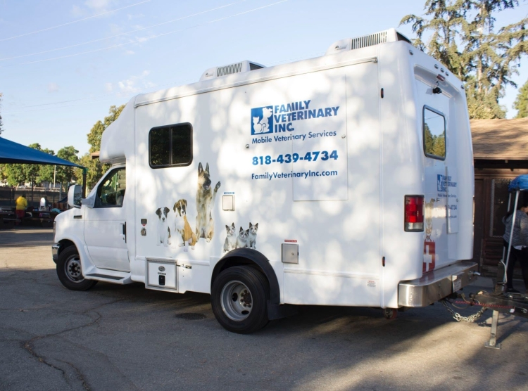 Low-Cost Spay and Neuter Surgeries by Latino Alliance for Animal CAre Foundation in Montebello, CA.